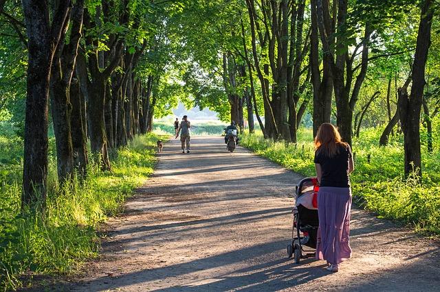 Se promener dans le 63 avec un bébé (en poussette) & un chien