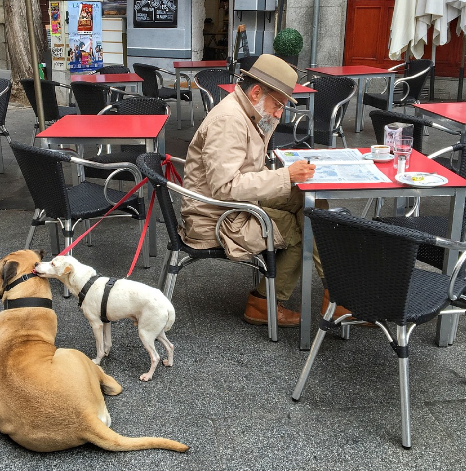 "Bars et restaurants clermontois ""Dog-Friendly"""