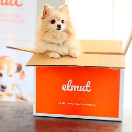Elmut Box
